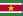 Paramaribo flag